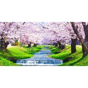 絵画風 壁紙ポスター  -地球の撮り方- 流れ落ちる段々の川と桜の絶景、猪苗代町の観音寺川の桜並木 パノラマ 日本の絶景 C-ZJP-076S1 (1152mm×576mm)|real-inter