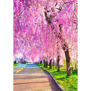 絵画風 壁紙ポスター  -地球の撮り方- しなだれるピンクのシャンデリア、喜多方市の日中線記念自転車歩行者道のしだれ桜 C-ZJP-080A2 (A2版 420mm×594mm)|real-inter