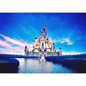 絵画風 壁紙ポスター  ディズニーワールド 星空とシンデレラ城 キャラクロ DNW-010A2 (A2版 594mm×420mm)|real-inter