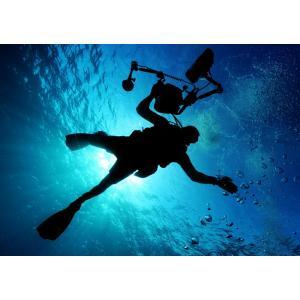 絵画風 壁紙ポスター  ダイビング スキューバ ダイバー 深海 海 海底 キャラクロ DVG-004A1 (A1版 830mm×585mm) real-inter