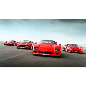 絵画風 壁紙ポスター  フェラーリ F40 F50 288GTO エンツォフェラーリ スーパーカー並走 キャラクロ FF40-005S1 (1023mm×576mm)|real-inter