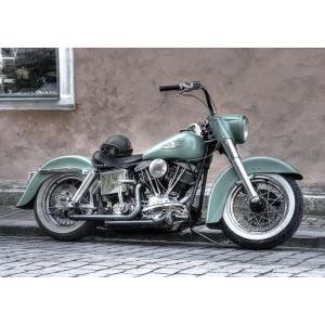 絵画風 壁紙ポスター  ハーレー ダビッドソン FLH ショベルヘッド 1970年代 バイク キャラクロ HDFL-001A2 (A2版 594mm×420mm)|real-inter