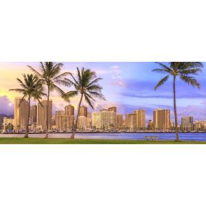 絵画風 壁紙ポスター  ハワイ ホノルル ビーチパークの朝焼け オアフ島 海 パノラマ キャラクロ HWI-102P1 (パノラマ版 1440mm×576mm)|real-inter