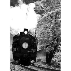 絵画風 壁紙ポスター  蒸気機関車 SL C11 SLさくら モノクロ キャラクロ JKS-011A2 (A2版 420mm×594mm)|real-inter