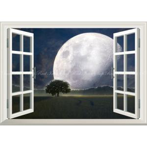 絵画風 壁紙ポスター  -窓の景色- 草原の大木とビッグムーン 月 満月 神秘的 スーパームーン 神秘 癒し 【窓仕様】 MON-020MA1 (A1版 830mm×585mm)|real-inter