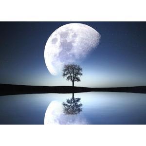 絵画風 壁紙ポスター  幻想的なビッグムーンと一本木 スターダスト 更待月 月 神秘 癒し キャラクロ MON-033A2 (A2版 594mm×420mm)|real-inter
