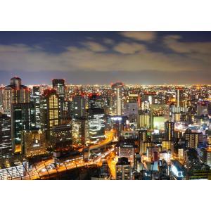 絵画風 壁紙ポスター  大阪 夜景 ネオン パノラマ キャラクロ OSK-001A2 (A2版 59...