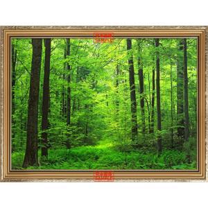絵画風 壁紙ポスター 森林 森林浴 緑 目の保養 気分転換 癒し リフレッシュ 【額縁印刷/トリックアート】 キャラクロ SNR-001SGC2 (594mm×447mm)|real-inter