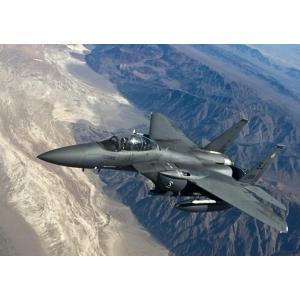 絵画風 壁紙ポスター  戦闘機 F-15E ストライクイーグル 米空軍 ボーイング ダグラス キャラ...