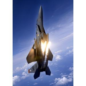絵画風 壁紙ポスター  戦闘機 F-15E ストライクイーグル 垂直飛行 米空軍 キャラクロ UAF...
