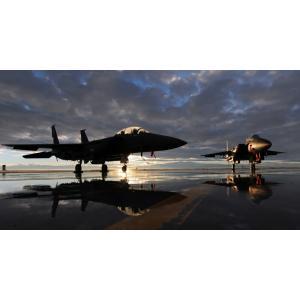 絵画風 壁紙ポスター  日没の戦闘機 F-15E ストライクイーグル USエアフォース ミリタリー ...