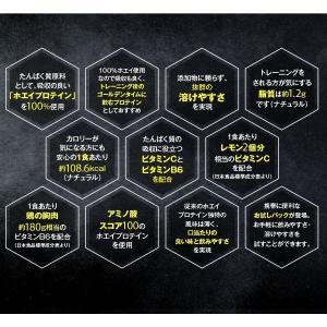 ポイント消化 オススメ 送料無料 1900円ポッキリ ビーレジェンドプロテイン(ホエイ) 3つのセットから選べる7種お試しパック|real-style|05