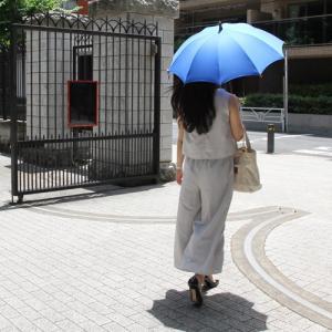 【東京都/前原光榮商店(まえはらこうえいしょうてん)】日傘 インディアンヘッド realjapanproject 06