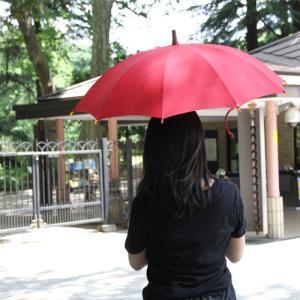 【東京都/前原光榮商店(まえはらこうえいしょうてん)】日傘 インディアンヘッド realjapanproject 03