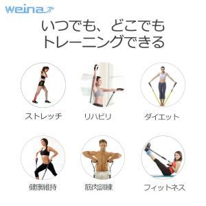 WEINAS フィットネスチューブ トレーニングチューブ 安全カバー付き 安全性高い 腹筋 胸筋 背中トレ 11PCSセット インナーマッス|reap