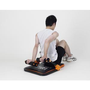 ALINCO(アルインコ) イージーエクサツイン EXG057D (腹筋 脇腹 胸部 太もも 腕部 エクササイズ用) reap