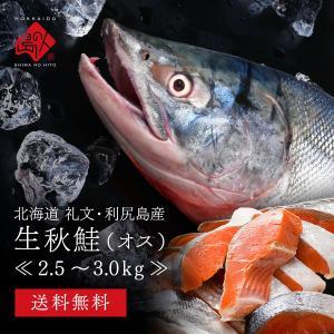 秋鮭 鮭 オス しゃけ 北海道産 生秋鮭 3.0〜3.5kg 送料無料 旬の秋鮭を丸ごと一本お届け|rebun