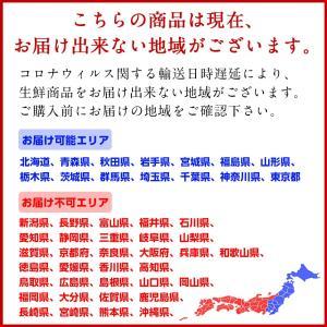 北海道 厚岸産 生牡蠣(まるえもん) 殻付き 10個(3Lサイズ) 生牡蠣 かき カキ 牡蠣 生食可 鍋 ギフト プレゼント用 内祝|rebun|02