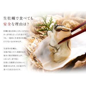 生牡蠣 牡蠣 カキ かき 生食可 殻付きLサイズ 8個 北海道 厚岸産 指定日可能 鍋 送料無料 ギフト プレゼント用 内祝|rebun|04