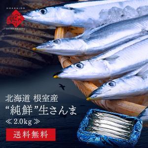 北海道産 生サンマ さんま 秋刀魚 2.0kg (15〜16尾前後) 送料無料 大サイズ 獲れたて新鮮な秋刀魚を北海道から直送!!|rebun
