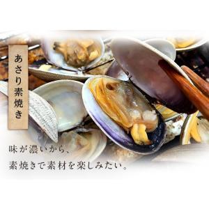 あさり アサリ 生 1kg 送料無料 北海道産 厚岸産 殻付 大サイズ|rebun|08