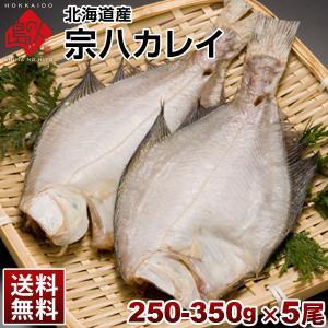 ( 生干し 昆布 干物 シリーズ ) 宗八カレイ 300-350g 5尾セット ギフト プレゼント用 北 海道 内祝|rebun