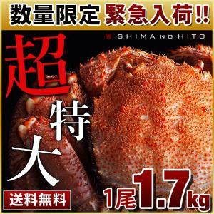 毛蟹 毛ガニ 特大 カニ 毛がに かに 蟹 1.7kg 1尾 数量限定 緊急入荷 ロシア産 海鮮 送料無料 北海道|rebun