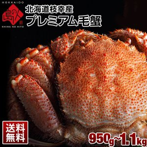 かに カニ 毛ガニ 北海道 2020年新物 枝幸産 プレミアム毛蟹 1.0kg 送料無料 蟹 グルメ ギフト プレゼント 誕生日 贈り物|rebun