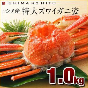 ズワイガニ (姿) 1.0kg ロシア産 ズワイ ずわいがに ギフト プレゼント用 北海道 内祝|rebun