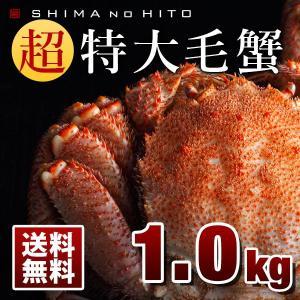 毛蟹 毛ガニ 特大 カニ 毛がに かに 蟹 1.0kg 1尾 ロシア産 海鮮 送料無料 北海道|rebun