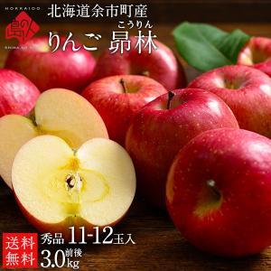 りんご リンゴ 林檎予約販売 北海道余市産 3kg 正規品 昴林 送料無料 rebun