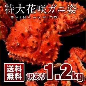 足折れ特大花咲ガニ 1.2kg 訳あり限定特価 特大 真っ赤に輝く幻の蟹 2018年新物 最高品質 送料無料|rebun