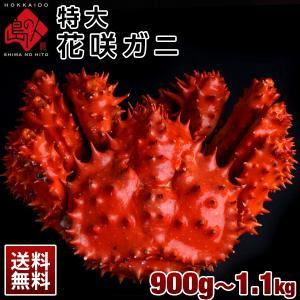 ≪真っ赤に輝く幻の蟹≫ 特大 花咲蟹 花咲ガニ 1.0kg 最高品質 冷凍 市場に出回らない大きさで食べ応え抜群! 味の濃厚さは蟹の中で1番|rebun