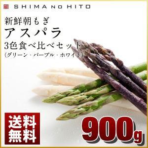 北海道産 アスパラガス アスパラ (2Lサイズ) グリーン ホワイト パープル 食べ比べ 900g (300g×3袋) 送料無料 最高鮮度保証 産地直送 北海道 (特産品 名物商品) rebun