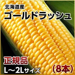 (とうもろこし トウモロコシ コーン)北海道産 ゴールドラッシュ(L〜2L)×8本 送料無料 ギフト プレゼント用 北海道 2019 内祝|rebun