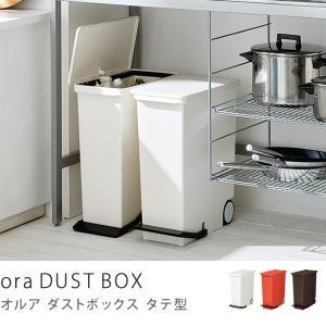 ゴミ箱 キッチン 45リットル 45l ふた付き ペダル スリム ゴミ箱 バケツ ダストボックス ora タテ型 おしゃれ receno