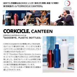 CORKCICLE CANTEEN コークシクル キャンティーン ステンレスボトル 270ml 9oz 水筒 タンブラー ステンレス ボトル マイボトル 保冷 保温 ラッピング ギフト|recommendo|03