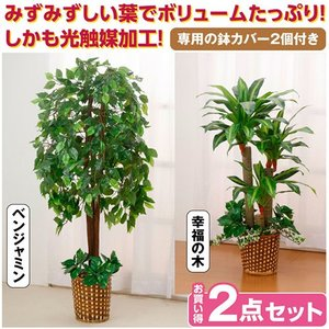 観葉植物 インテリアグリーン 2点セット 人工観葉植物 造花 光触媒 水やり不要 ベンジャミン 幸福の木 代引不可 recommendo