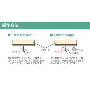 マグネットタイプ スリムロールスクリーン 120×180cm 防炎 消臭 防汚 抗菌 代引不可|recommendo|10