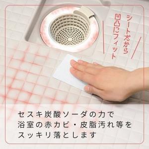 レック 激落ち 赤カビくん 浴室ピカピカ セスキ配合 お掃除シート 5枚入・10カット分 recommendo 03