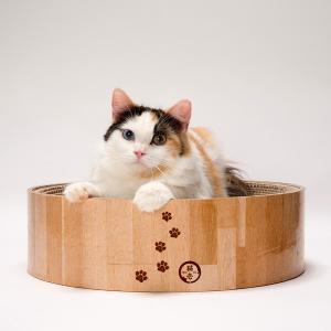 猫壱 バリバリボウル 猫柄|recommendo|02