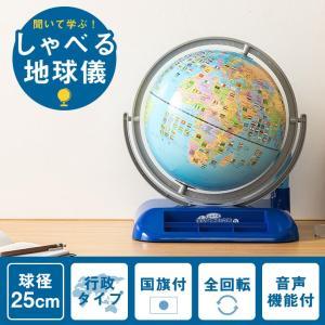 レイメイ藤井 しゃべる地球儀 OYV400