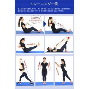 Muscle Project マッスルプロジェクト トレーニングチューブセット ゴムバンド ストレッチバンド チューブ トレーニング|recommendo|06