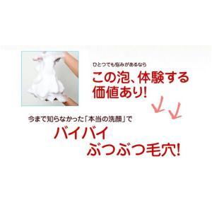 どろ豆乳石鹸 どろあわわ 110g チューブタイプ ネット付き 洗顔石鹸 洗顔料 洗顔フォーム 洗顔 泡 泥 ドロ 石鹸 豆乳|recommendo|09