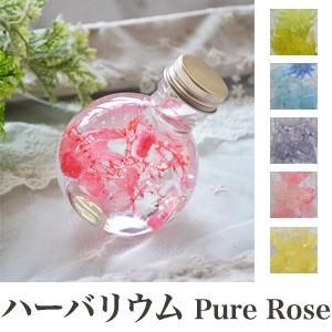 Pure Rose ハーバリウム Herbarium ネコ 100ml 植物標本 ディスプレイ フラワー ギフト インテリア プレゼント 母の日 代引不可 recommendo