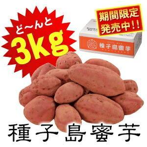 夢百笑種子島蜜芋3kg Sサイズ サツマイモ 代引不可...