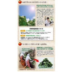 【11/25 12:00販売終了】和郷園 カット冷凍野菜 選べる全9種類 3パックチョイス(着日指定不可)|recommendo|02