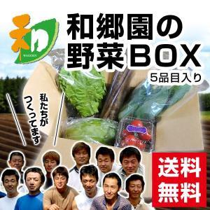 和郷園 野菜ボックス5品目 野菜セット 野菜BOX 産地直送 農家厳選|recommendo