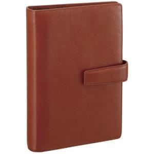 レイメイ藤井 システム手帳 ダヴィンチ スタンダード 聖書サイズ ブラウン DB3005C