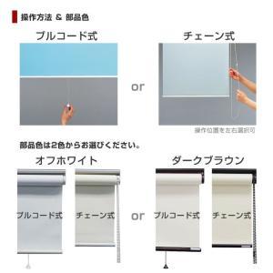 日本製 ロールスクリーン オーダー 1cm単位 リーズナブル 幅25~40cm 高さ30~90cm タチカワブラインドグループ 代引不可|recommendo|04